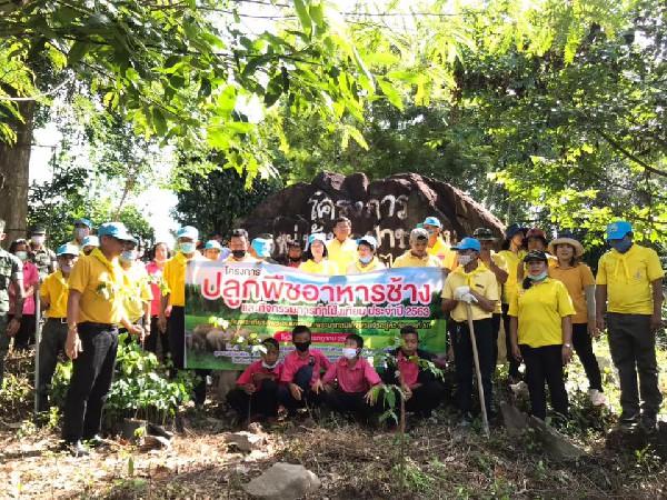 การร่วมปลูกป่ากับชุมชน
